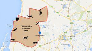 Willpattu National Park sri lanka