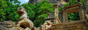 Sri Lankan Riders Tours| Sri lanka | TripAdvisor | Colombo