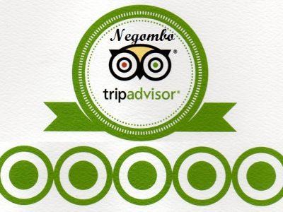 Negombo Tripadvisor sri lankan riders