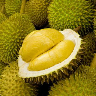 sri lanka durian