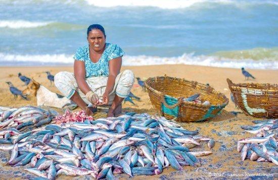 negombo market with sri lankan riders