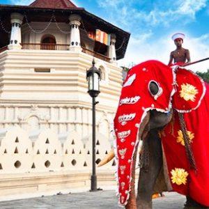 Esala Full Moon Poya Day | Sri Lankan Riders