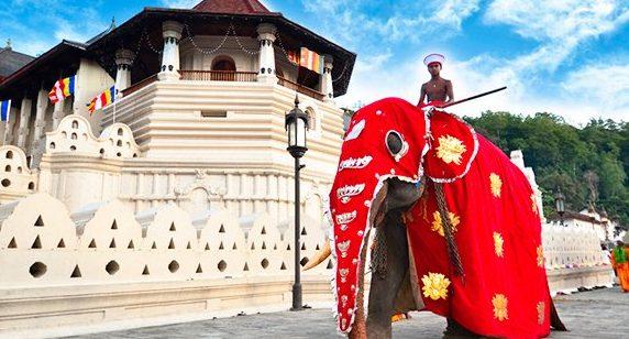 Esala Full Moon Poya Day   Sri Lankan Riders