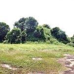 Village tour Sri Lanka  Anuradhapura   Kurunegala